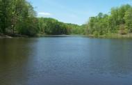 Grab your binoculars: bird walk at Wetlands Preserve, April 9