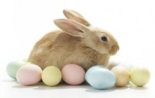 What's going on in Prince William this Easter weekend?
