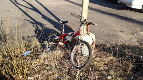 Where are all the bike racks in Prince William?