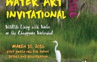 Students showcase artwork at Water Art Invitational, Mar. 10