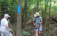 Help keep Prince William trails clean with the Adopt-A-Trail program