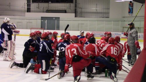 Washington Capitals to give free hockey equipment to kids at Prince William Ice Center