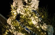 Occoquan's Holiday Open House, tree lighting ceremony tomorrow