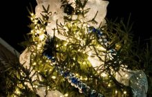 Occoquan's Holiday Open House, tree lighting ceremony tomorrow