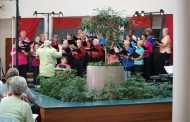 Woodbridge Community Choir celebrating 50th Christmas concert season, Dec. 3,4