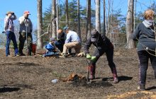 Community plants 470 trees for reforestation project in Woodbridge