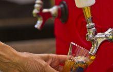Grab a brew at NOVA Summer BrewFest this weekend