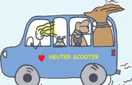 Community Conversations: Neuter Scooter provides low-cost care for Prince William pets