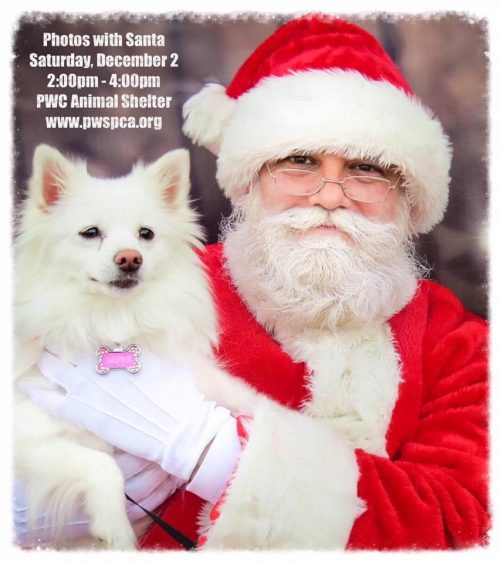 Tree lighting event at Prince William animal shelter, Dec. 2