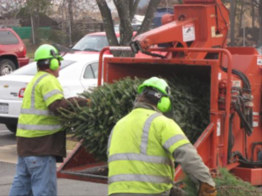 NOVEC will take your holiday trees & recycle them, Dec. 26 – Jan. 8