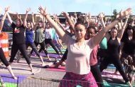 Farmer's Market Woodbridge offers goat yoga at Potomac Mills Mall