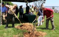 Woodbridge Rotary Club donates trees to Leesylvania State Park
