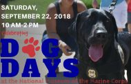 Dog Days event will feature pet adoptions, activities