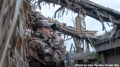 Waterfowl blinds available for rent at Widewater State Park