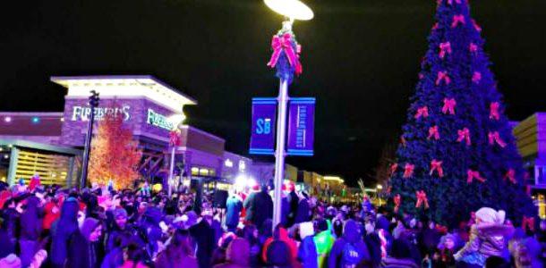 Stonebridge At Potomac Town Center Hosts Holiday Tree Lighting