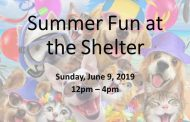 Pet adoptions, activities to be offered at animal shelter event