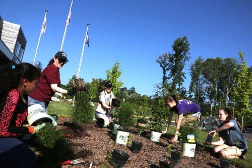 Fire station receives pollinator garden
