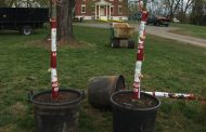 Company donating trees to Manassas parks, schools
