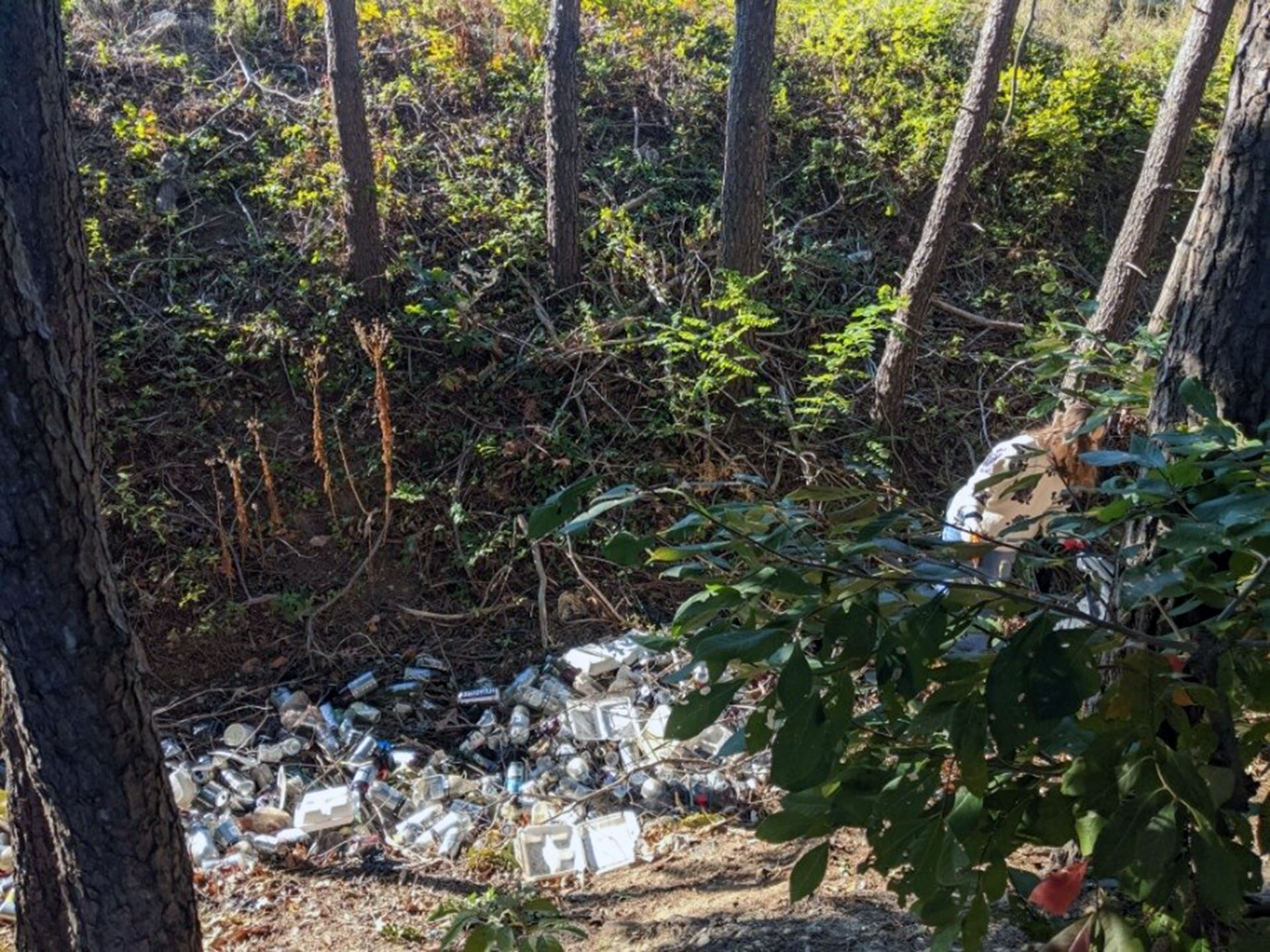 Litter cleanup to be held in Occoquan, December 12