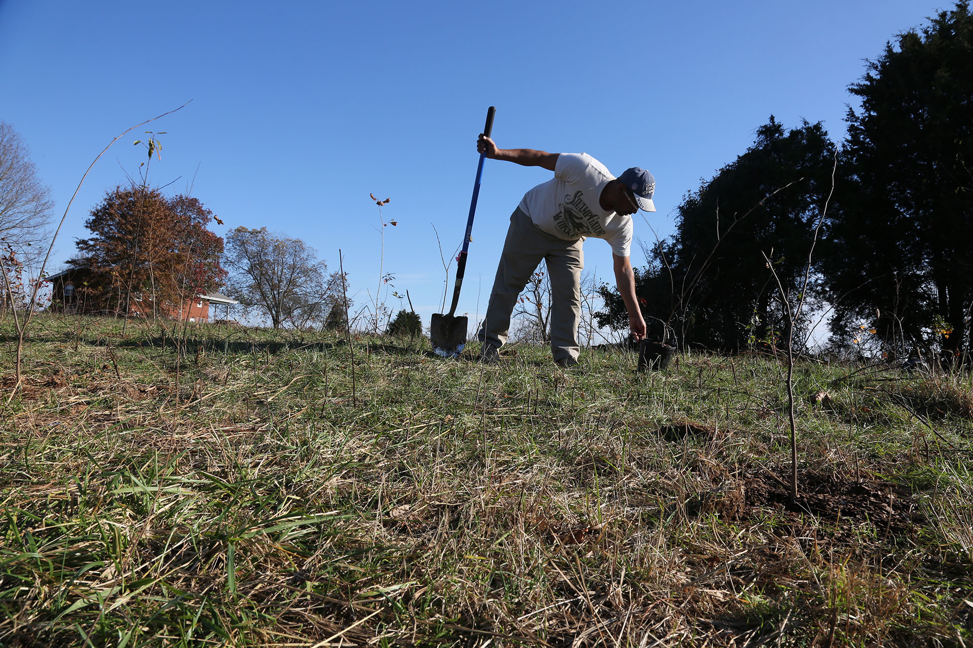 More than 6,300 trees planted at Bristoe Station Battlefield Heritage Park